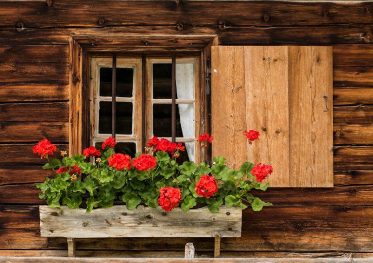Httenfenster